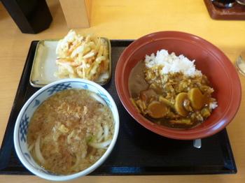 カレーかき揚げ8.JPG